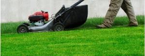 Serenite à domicile jardinage